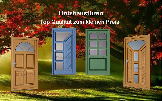 haust ren holz ab 990 00 ks hausbau24. Black Bedroom Furniture Sets. Home Design Ideas